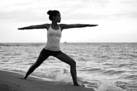 Warrior Pose (Virabhadrasana)