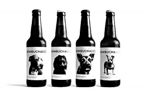 Kombucha Dog