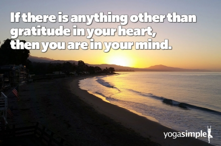 Quote: Gratitude in Your Heart